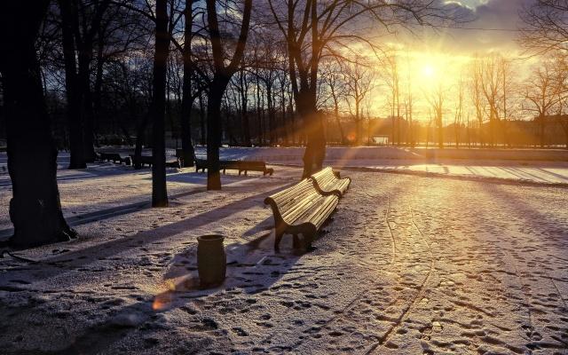 nature-sky-sun-winter-sunset-tree-snow-wallpaper-1