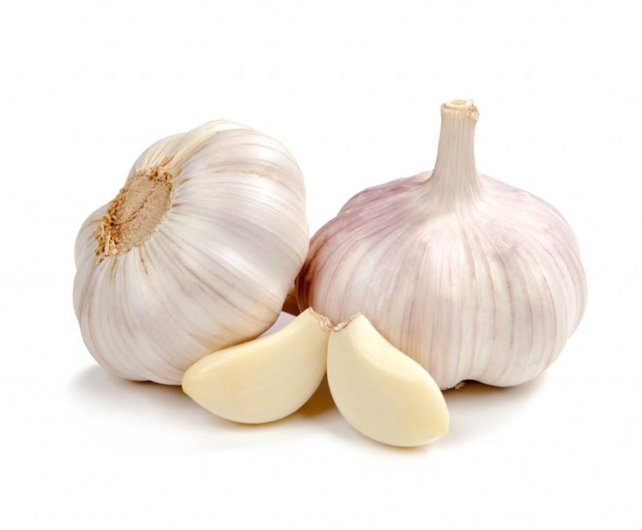 garlic-1024x846