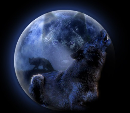 Full Wolf Moon Jan 10 2020 How to celebrate!
